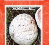 Насіння сухий міцелій грибів Шампиньйон розтріскующийся 10г