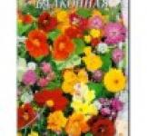Насіння квіткова суміш Балконна 0,4 г