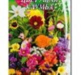 Насіння квіткова суміш Квітуча Клумба 1 г