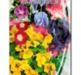 Насіння квіткової суміші Плетюча 1 г
