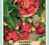 Насіння суниці садової Темтейшин 50шт (Legutko Польща)