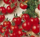 Насіння помідора Черрі червоний 0,2г
