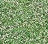 Травосуміші насіння сенокосной № 1 (1кг)