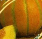 Насіння дині Ожен 15шт ( ТМ Гавриш)