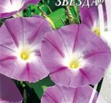 Насіння Іпомеї Пурпурова зірка (1г)