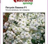 Насіння Петунії ампельної великоквіткової Лавина біла F1 (10шт)
