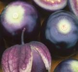 Насіння фізаліса Пурпурный 0,2г