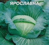 Насіння капусти білокочанної Ярославна 10г Насіння України