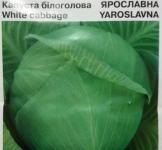 Насіння капусти Ярославна 10г (Коуел Італія)